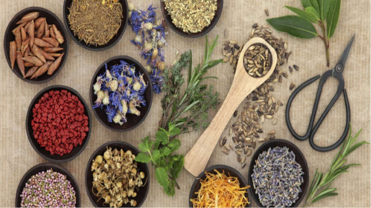 naturopathy-alternative-therapy